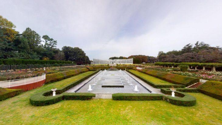 """オンライン植物園""""第二弾"""" 〜薔薇に恋しました〜"""